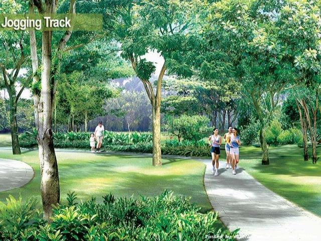 jogging-track-2